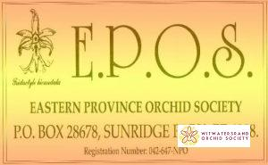 Eastern Province Orchid Society